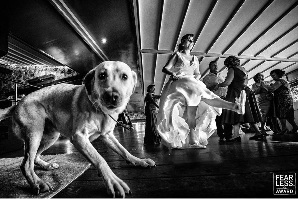 Fearless Photographers. Una boda distinta.